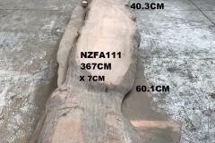 NZFA111