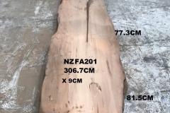 NZFA201