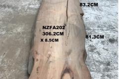 NZFA202