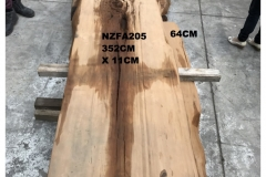 NZFA205