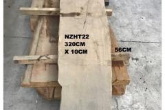 NZHT22