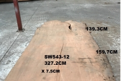 SW543-12