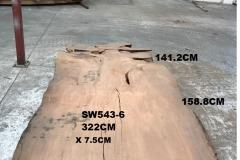 SW543-6