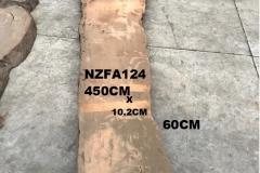 NZFA124