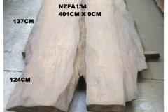 NZFA134