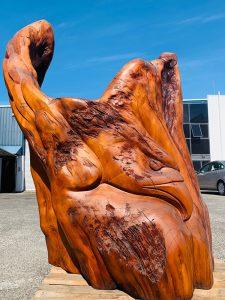 Haast eagle ancient kauri