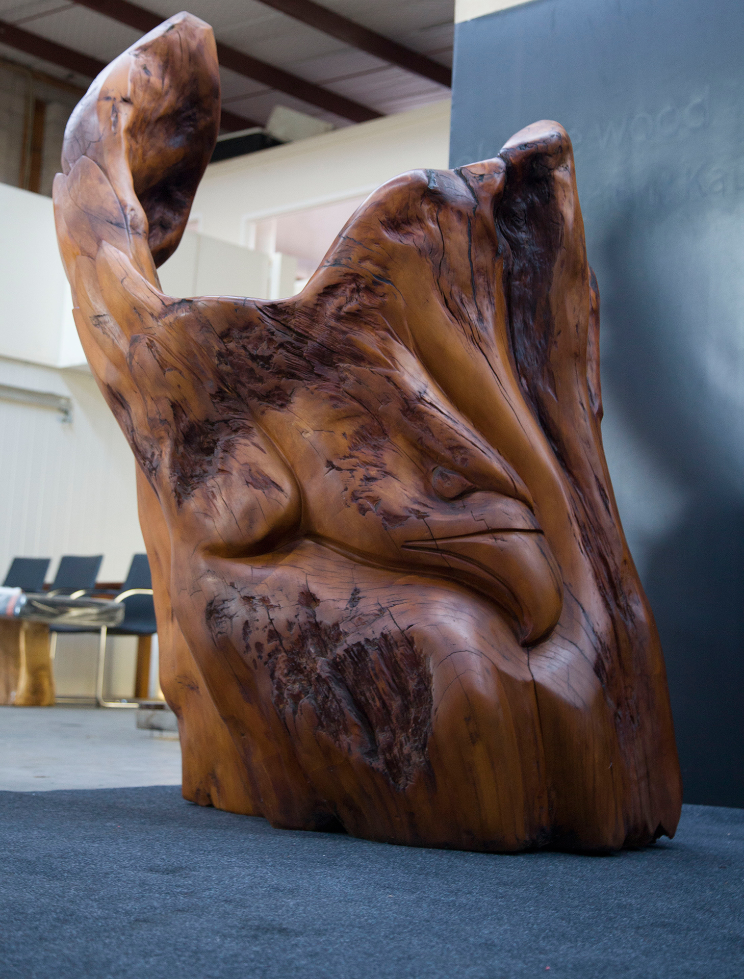 Haast Eagle Ancient Kauri sculpture