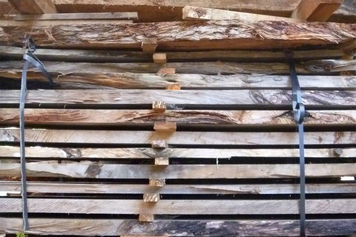 ICEWOOD Kauri drying