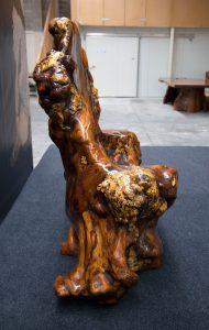 The Throne Ancient Kauri sculpture
