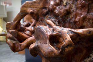 Treebeard Ancient Kauri sculpture