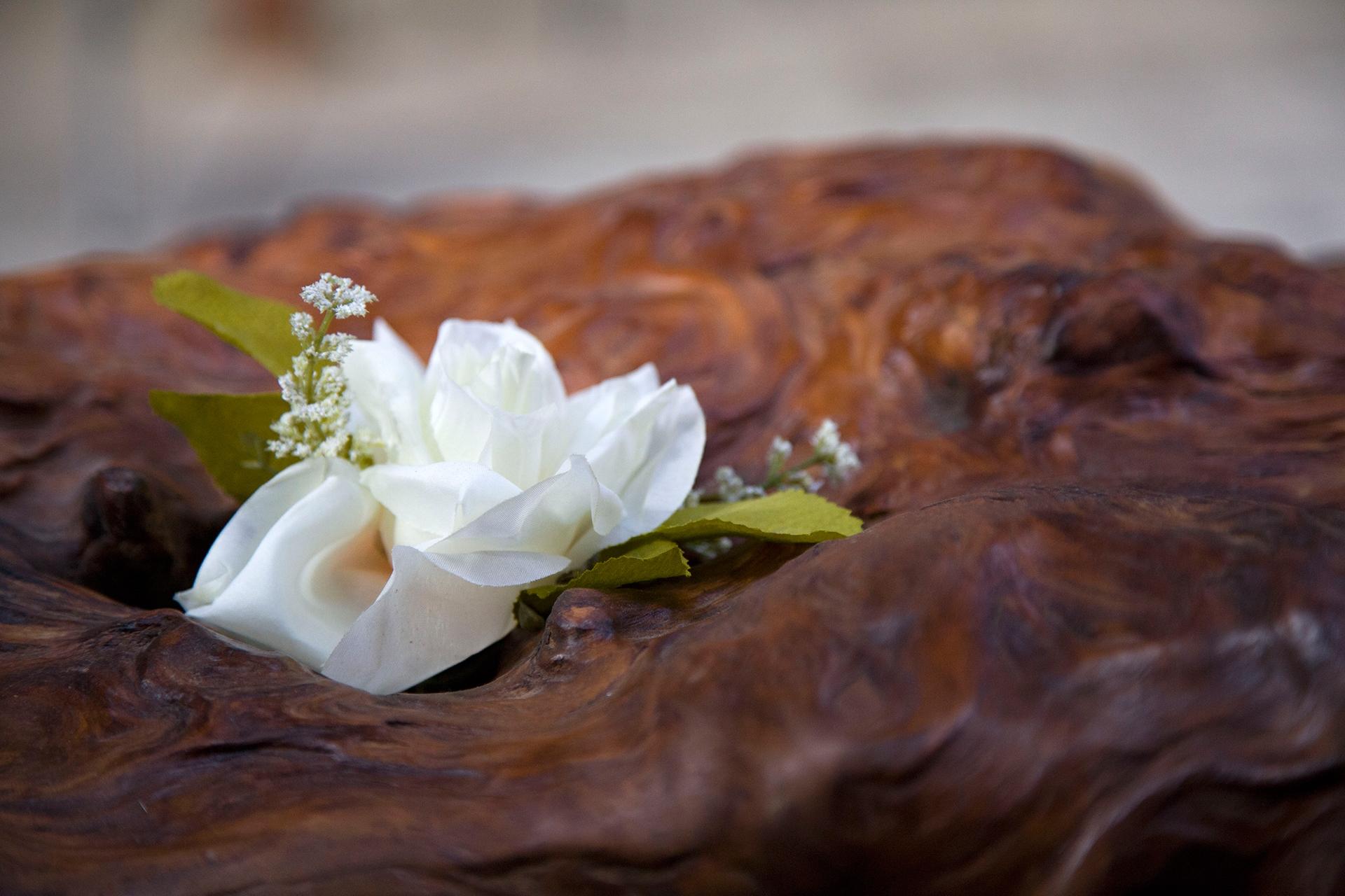 Ancient Kauri table