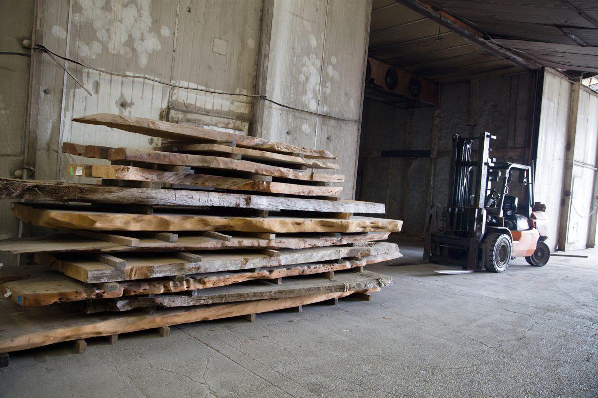 Kauri drying